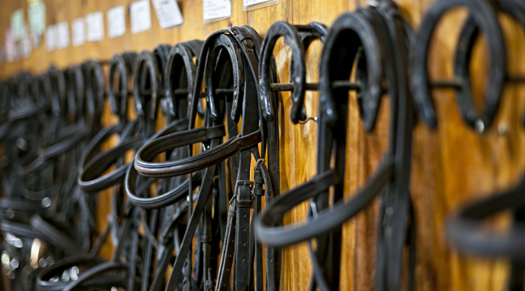 Sprzęt jeździecki w stajni