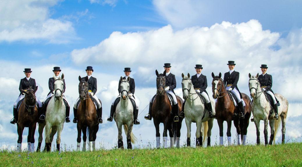 Grupa jeźdźców ujeżdżeniowych na koniach