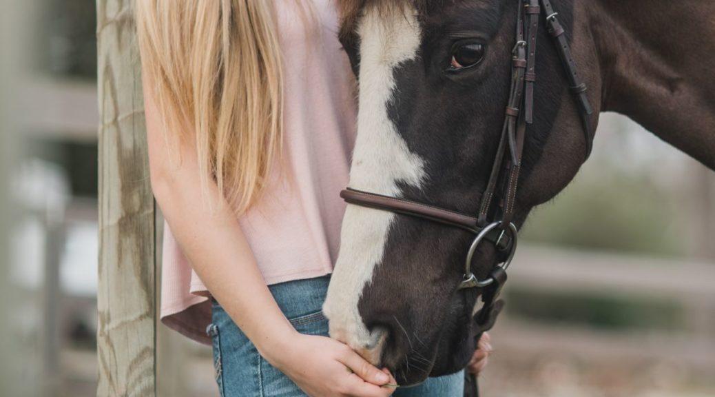 Koń z właścicielem