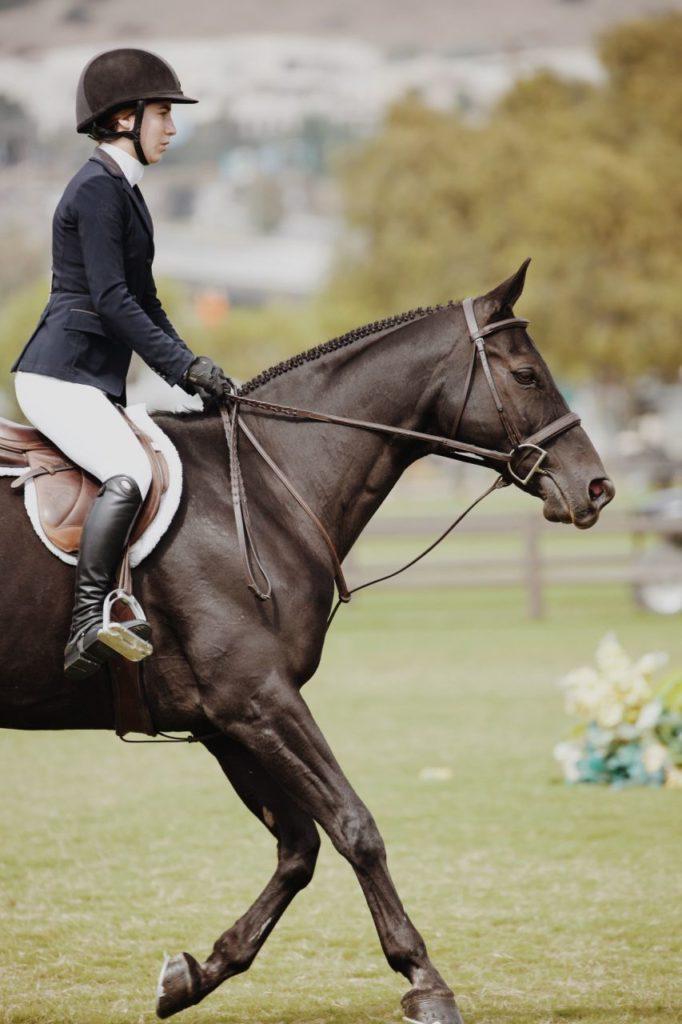 Jeździec na koniu
