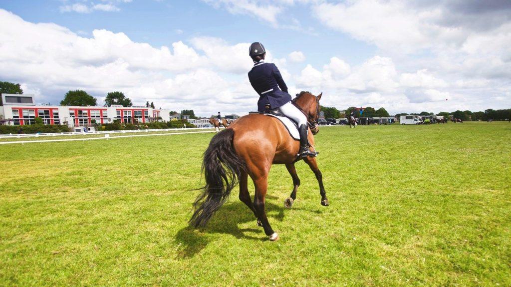 Jeździec - ujeżdżenie