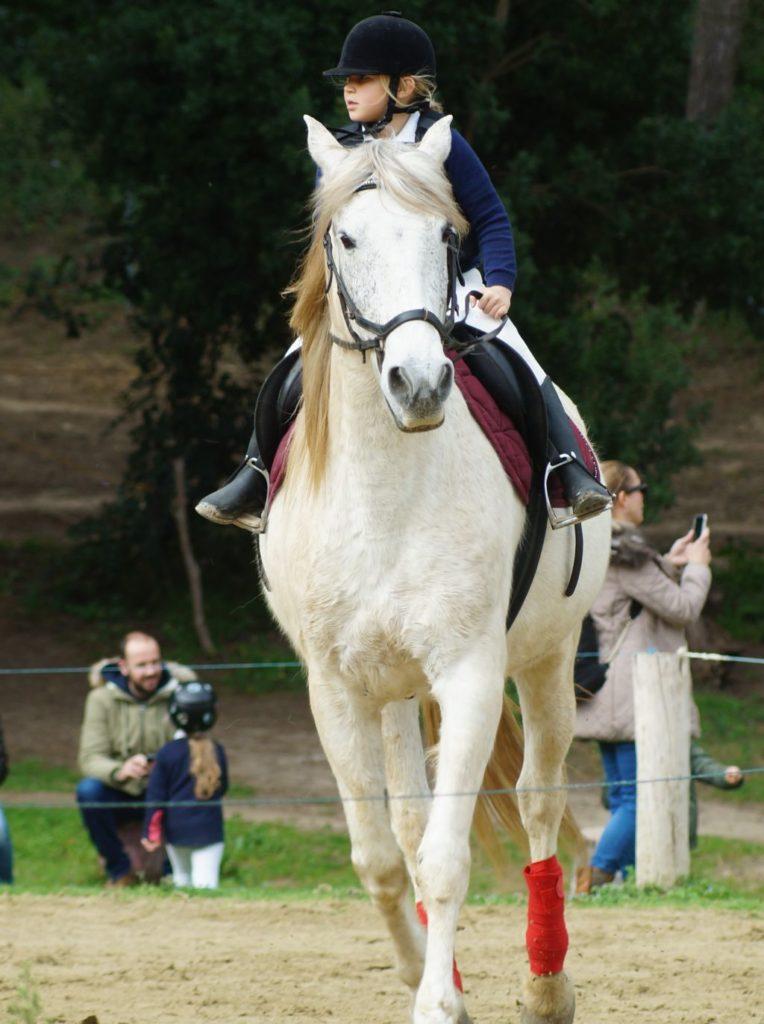 Jeździec na koniu w kasku