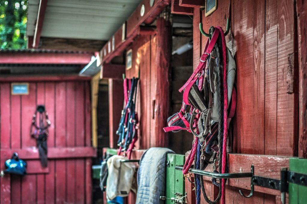 Wyposażenie jeździeckie